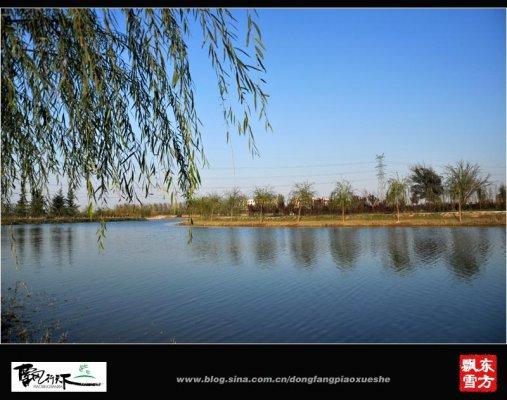 焦作大沙河带状湿地项目